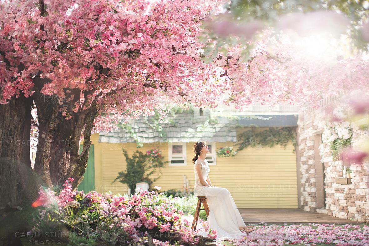 Korea pre wedding (115).jpg