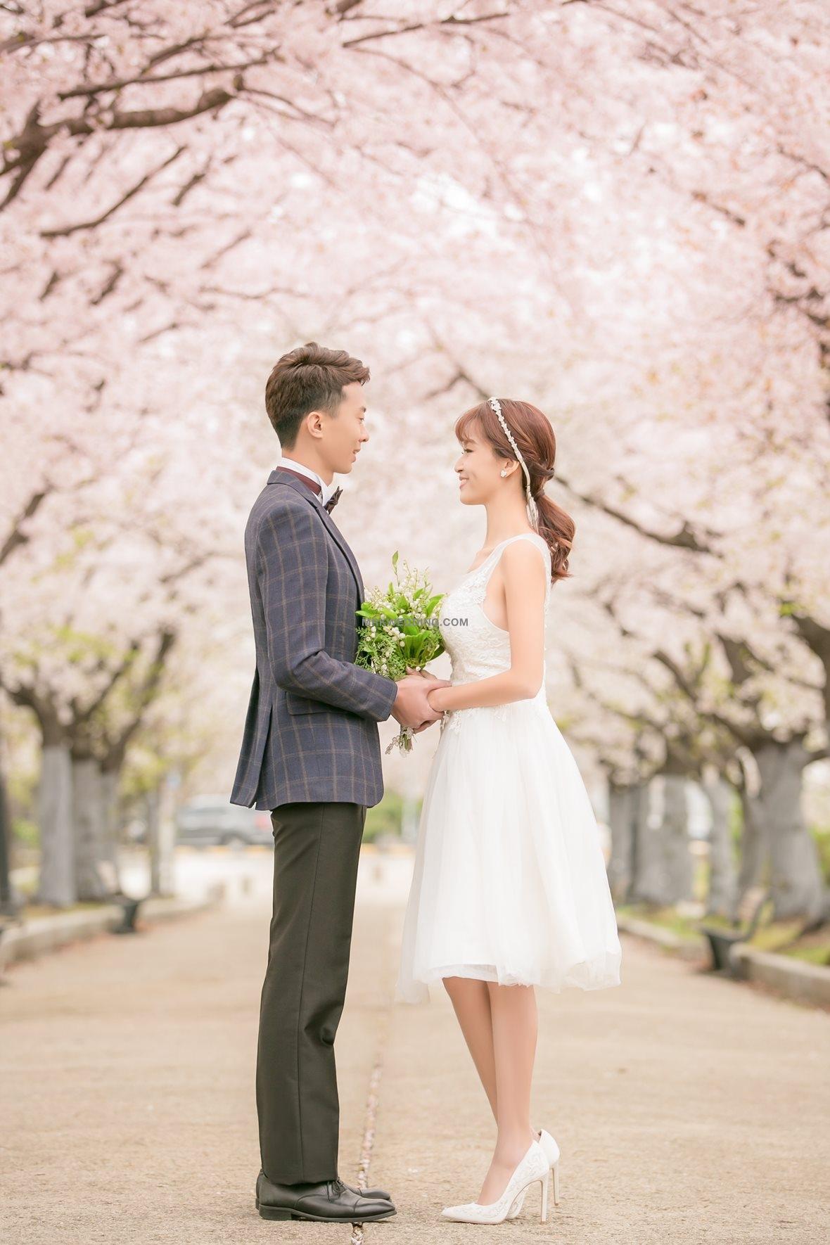 korea pre wedding (0)_1.jpg