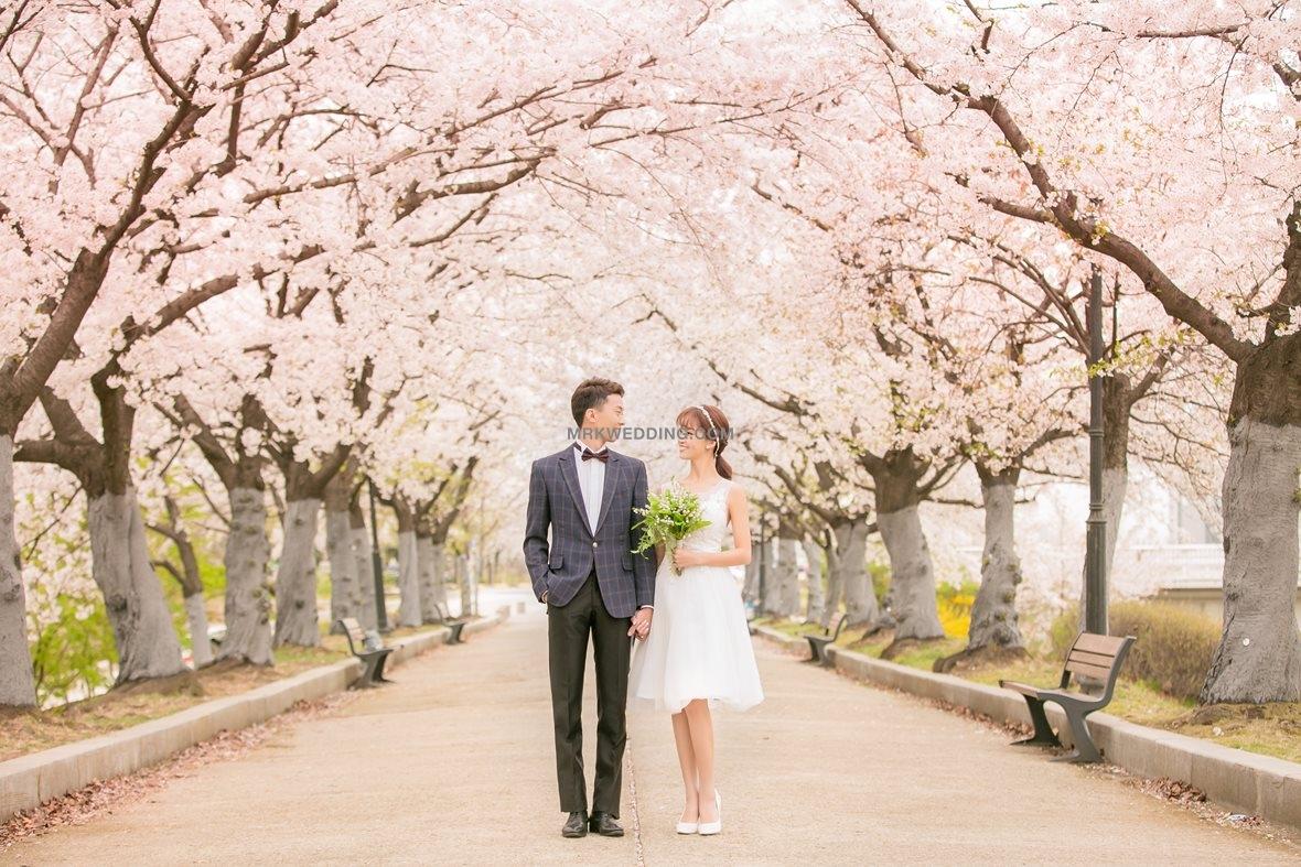 002 korea pre wedding (0)_2.jpg