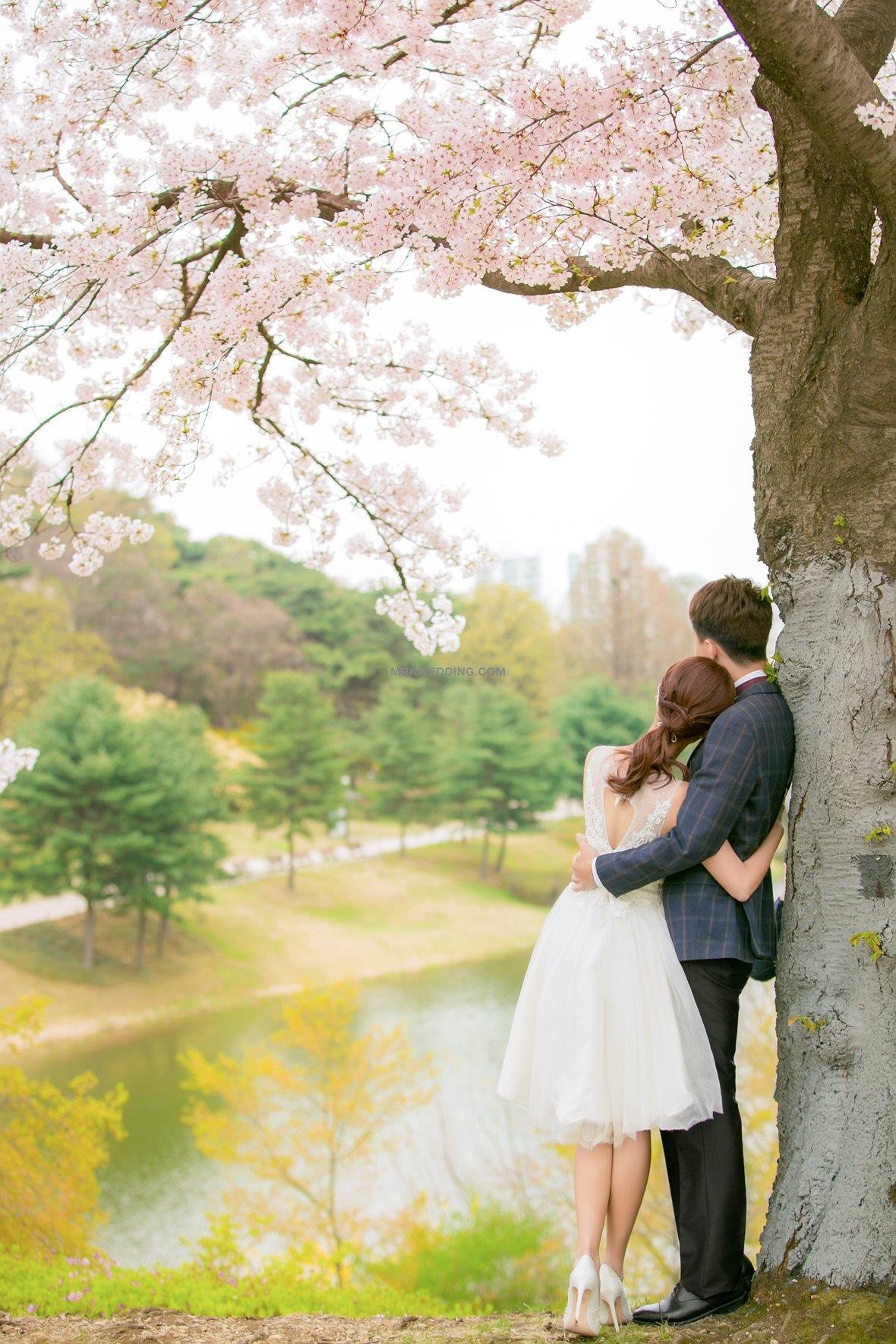 korea pre wedding (0)_3.jpg