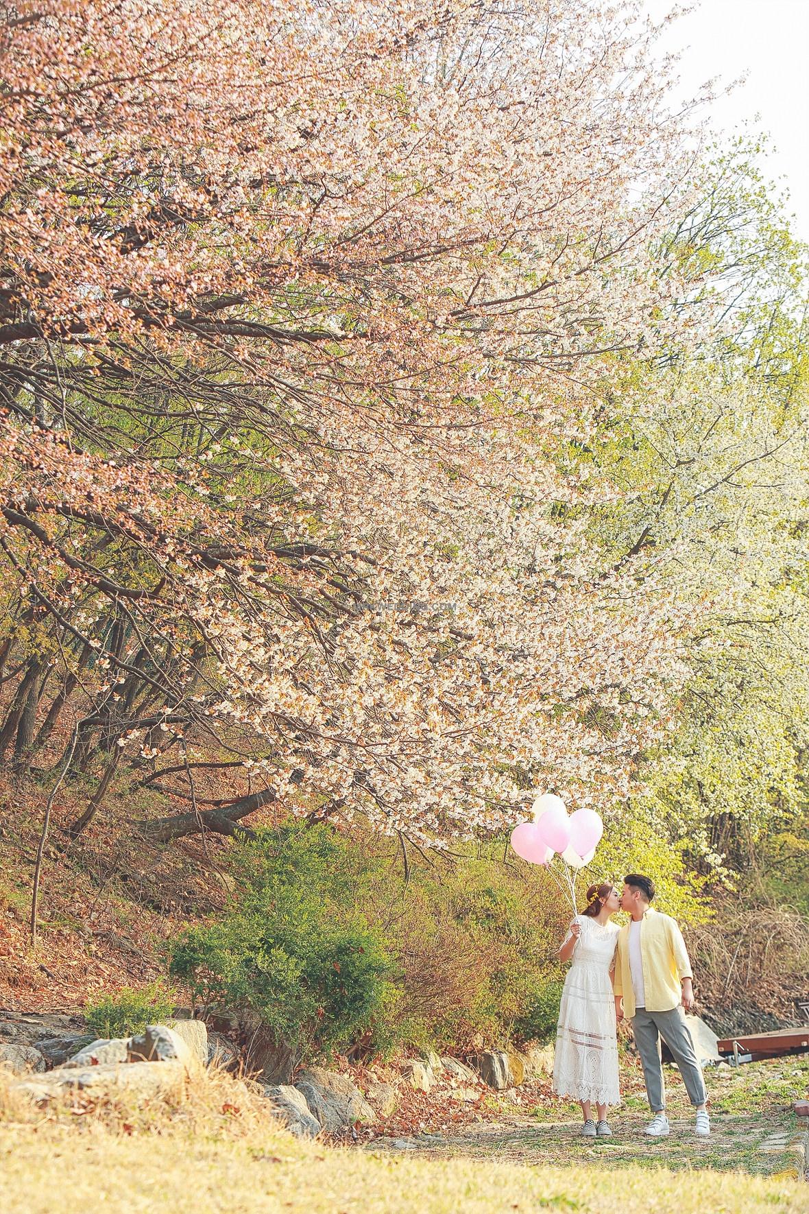 11korea pre wedding (22).jpg