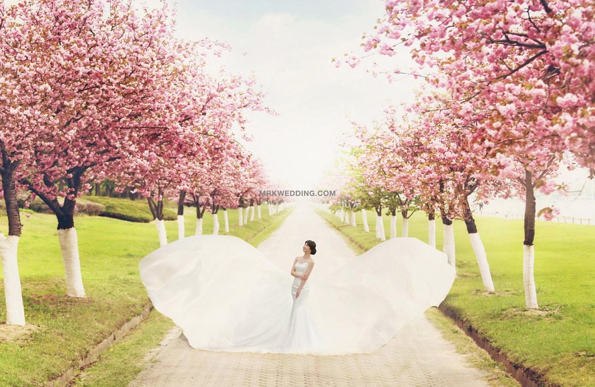 korea pre wedding (23).jpg