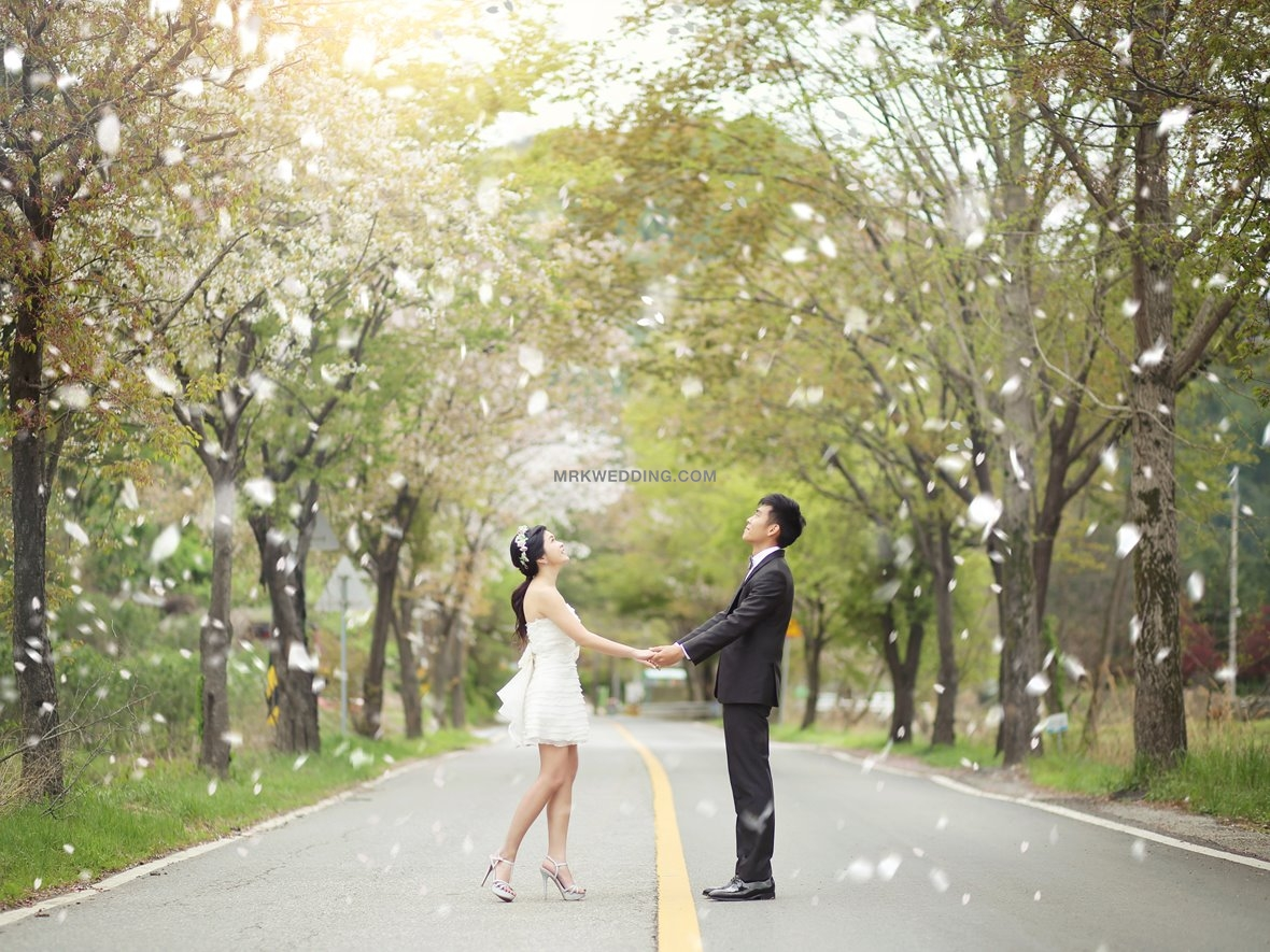 Korea pre wedding photography (20).jpg