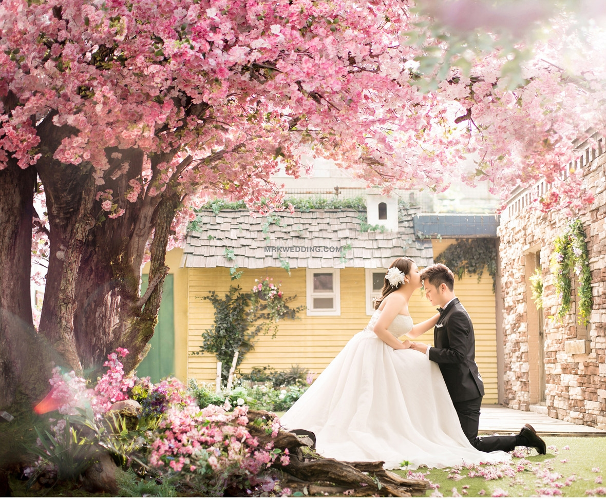korea pre wedding (12).jpg