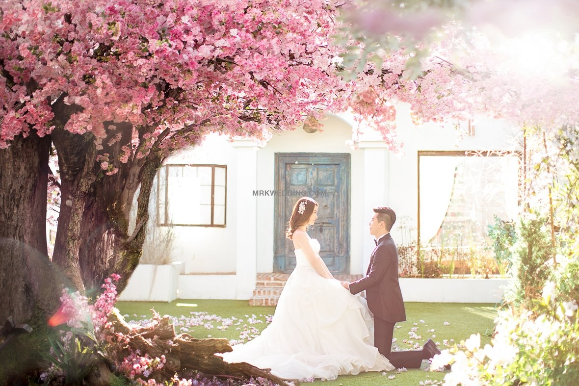 Korea pre wedding package (16).jpg