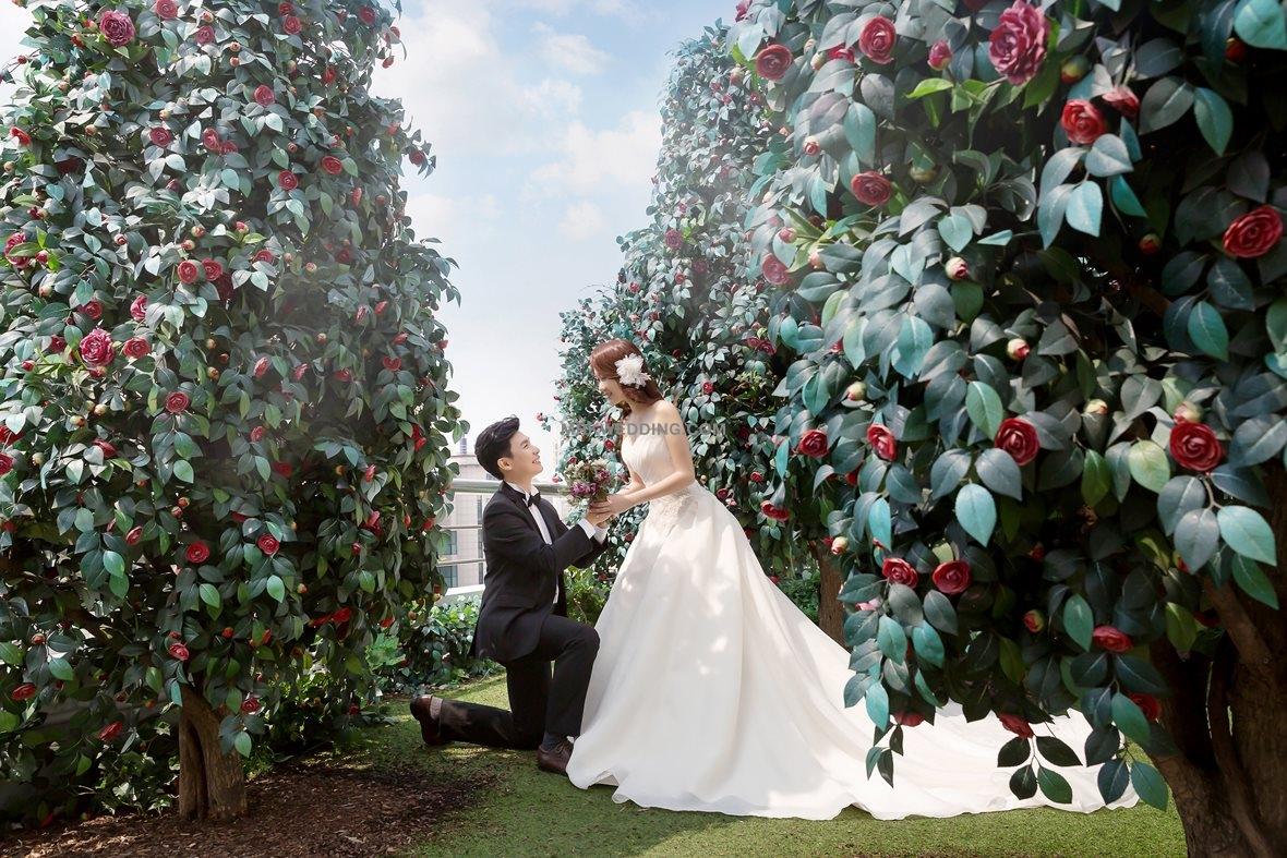 002 korea pre wedding (5).jpg