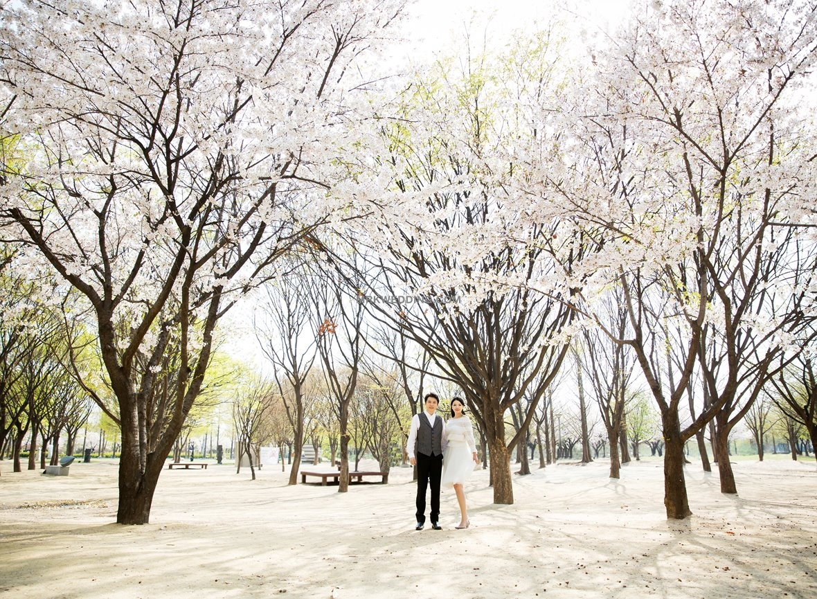 Korea outdoor shooting (4).jpg