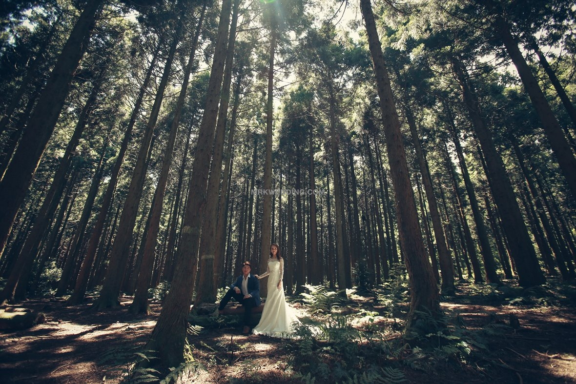 Jeju pre wedding (44).jpg