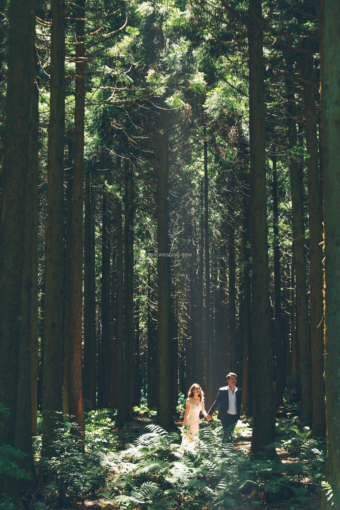 Jeju pre wedding (42).jpg