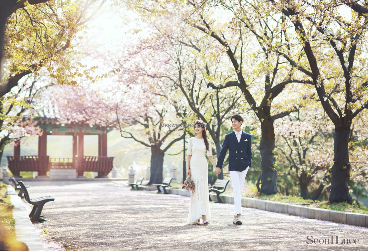 Korea pre wedding photography (4).jpg