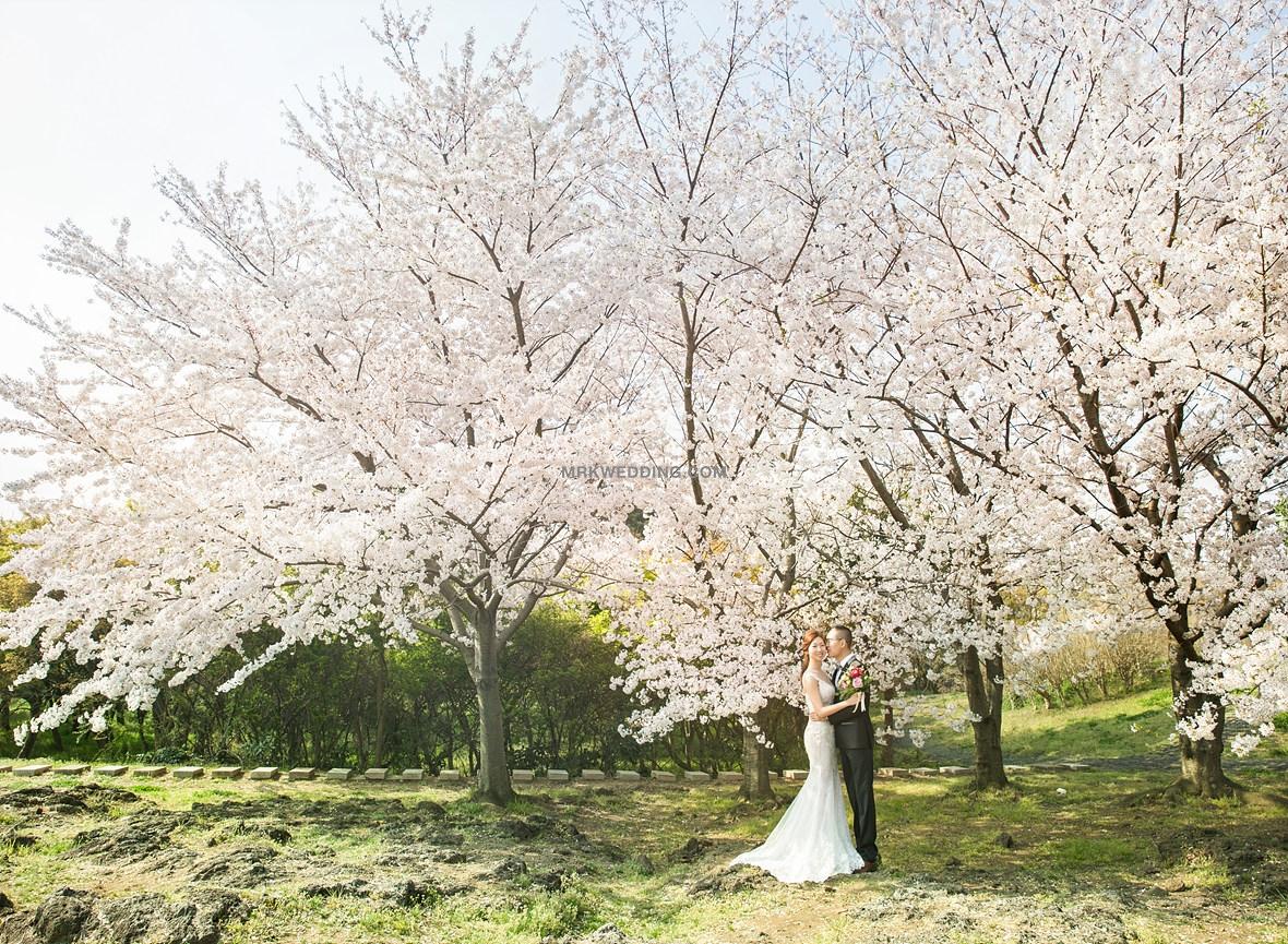 04korea pre wedding (2).jpg