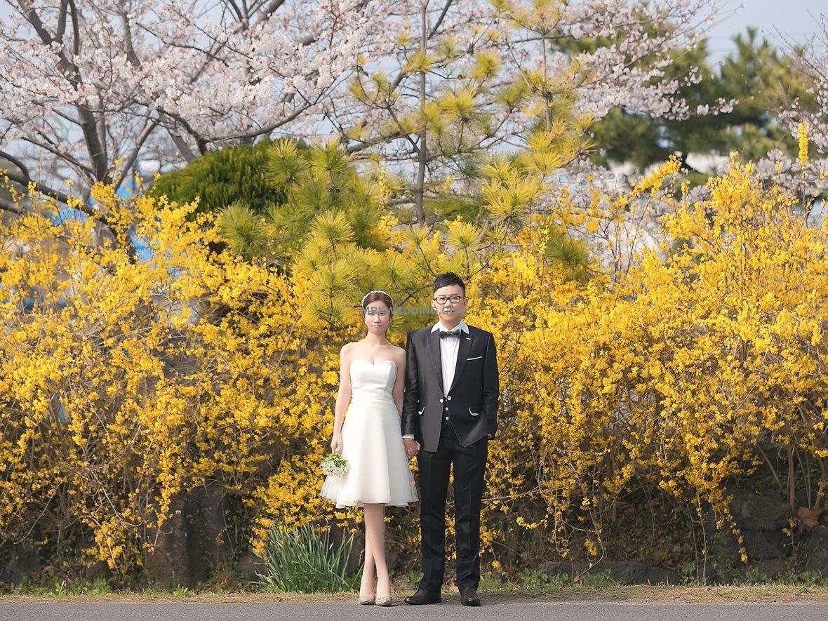003 korea pre wedding (20).jpg