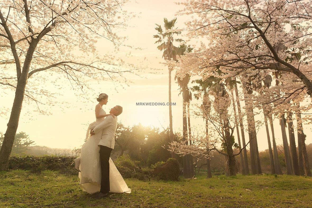 001 korea pre wedding (6).jpg