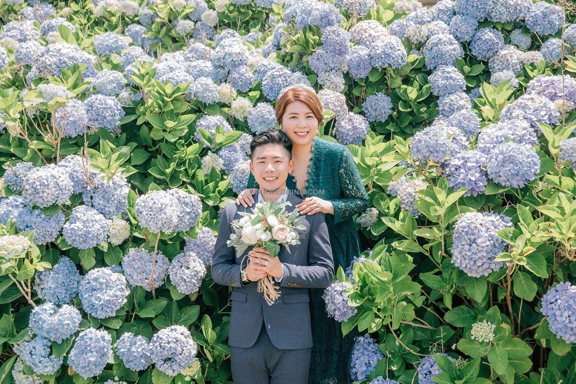 002 Jeju pre wedding (9).jpg