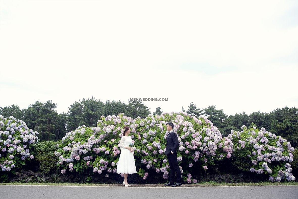 Jeju pre wedding (13).jpg