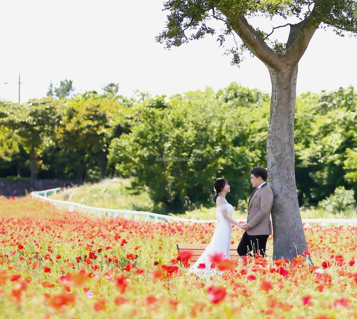 Korea pre wedding (18).jpg