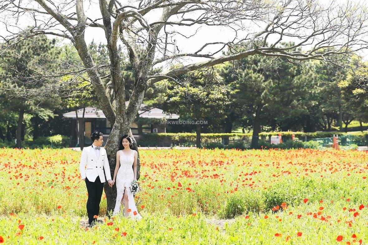 001 korea pre wedding (10).jpg