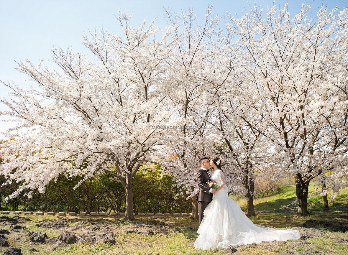 004 korea pre wedding (17).jpg