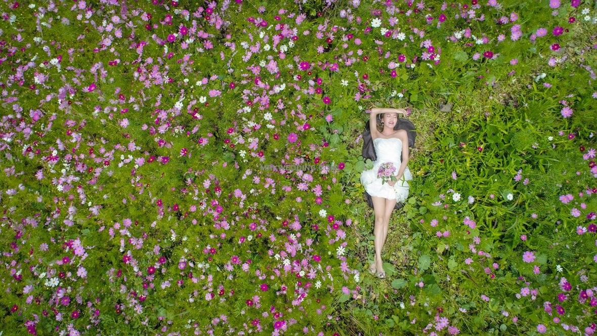 Korea pre wedding photography (1).jpg