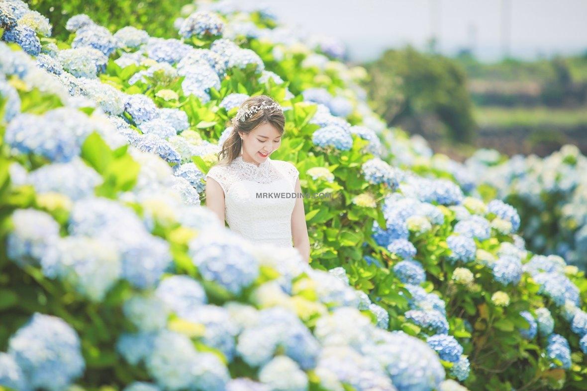 Korea pre wedding 5 (1).jpg