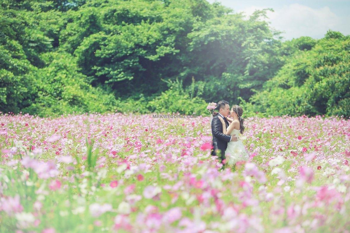Korea pre wedding 4 (5).jpg