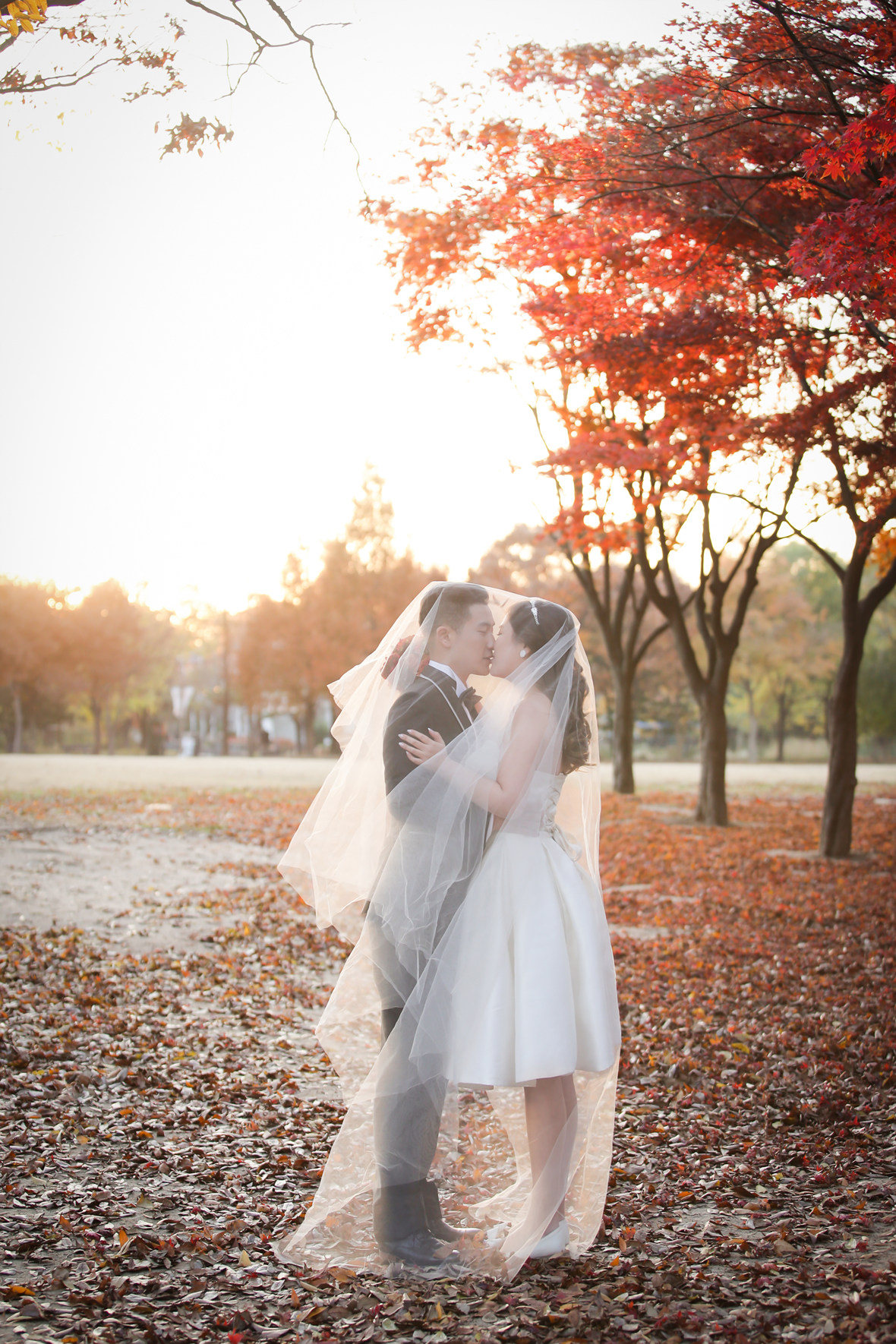 Korea pre wedding photography (4).jpeg