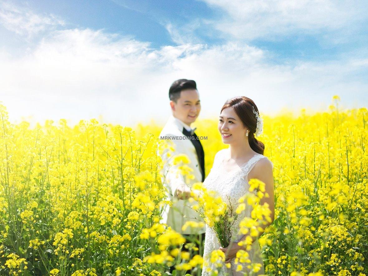 Jeju pre wedding (11).jpg