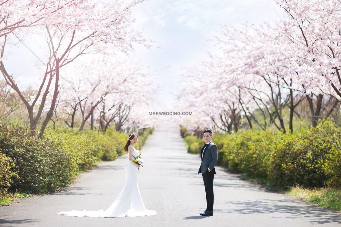 Jeju pre wedding (4).jpg