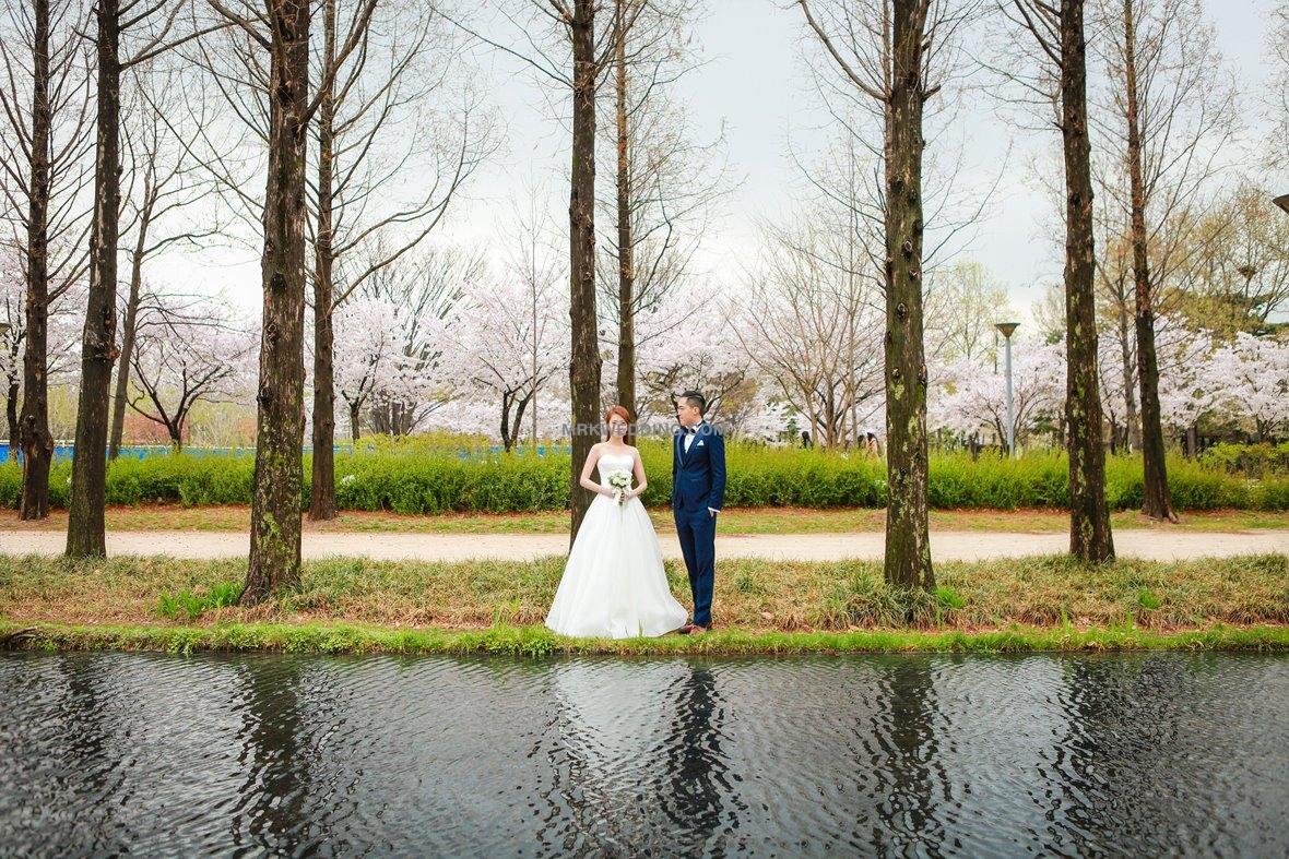 0001 Korea pre wedding (11).jpg