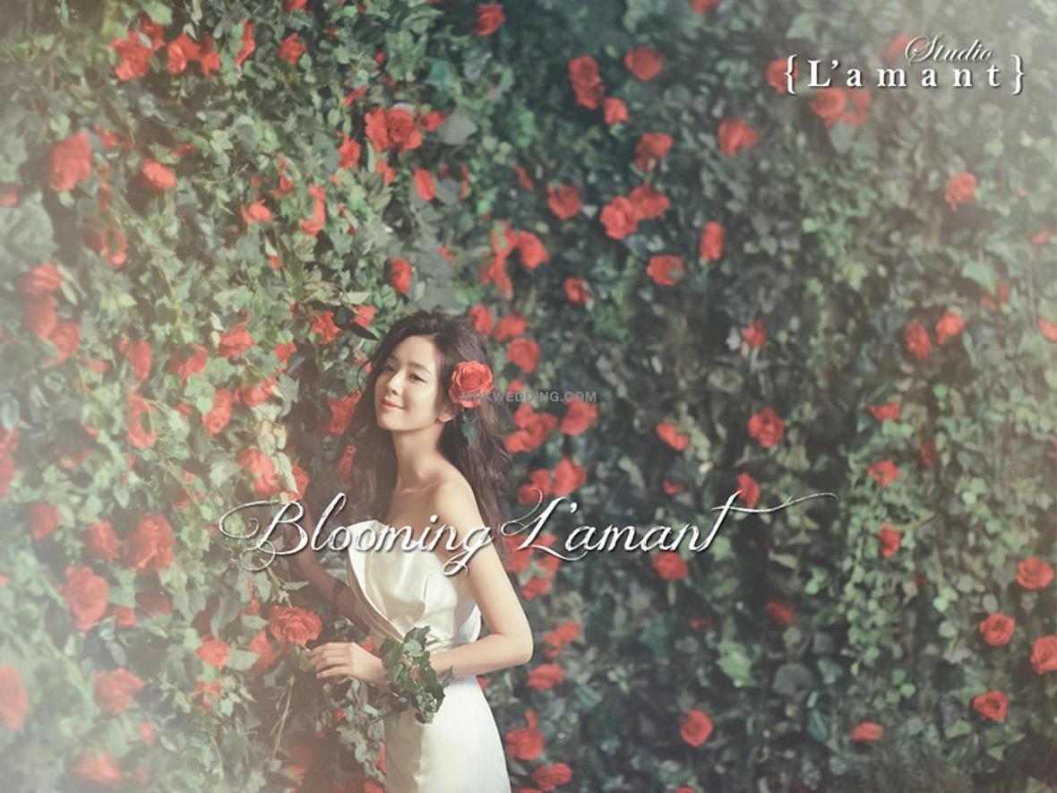 Blooming-Lamant-SG4_resize.jpg