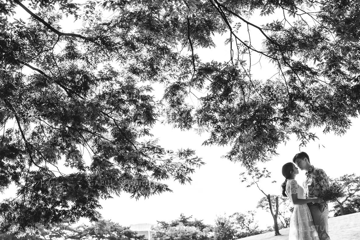Korea pre wedding 021.jpg