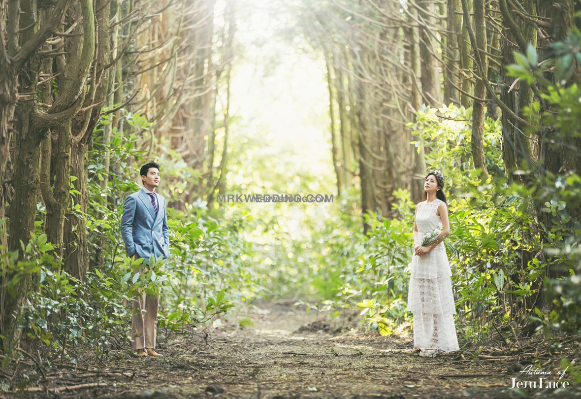 Korea pre wedding photography (14).jpg