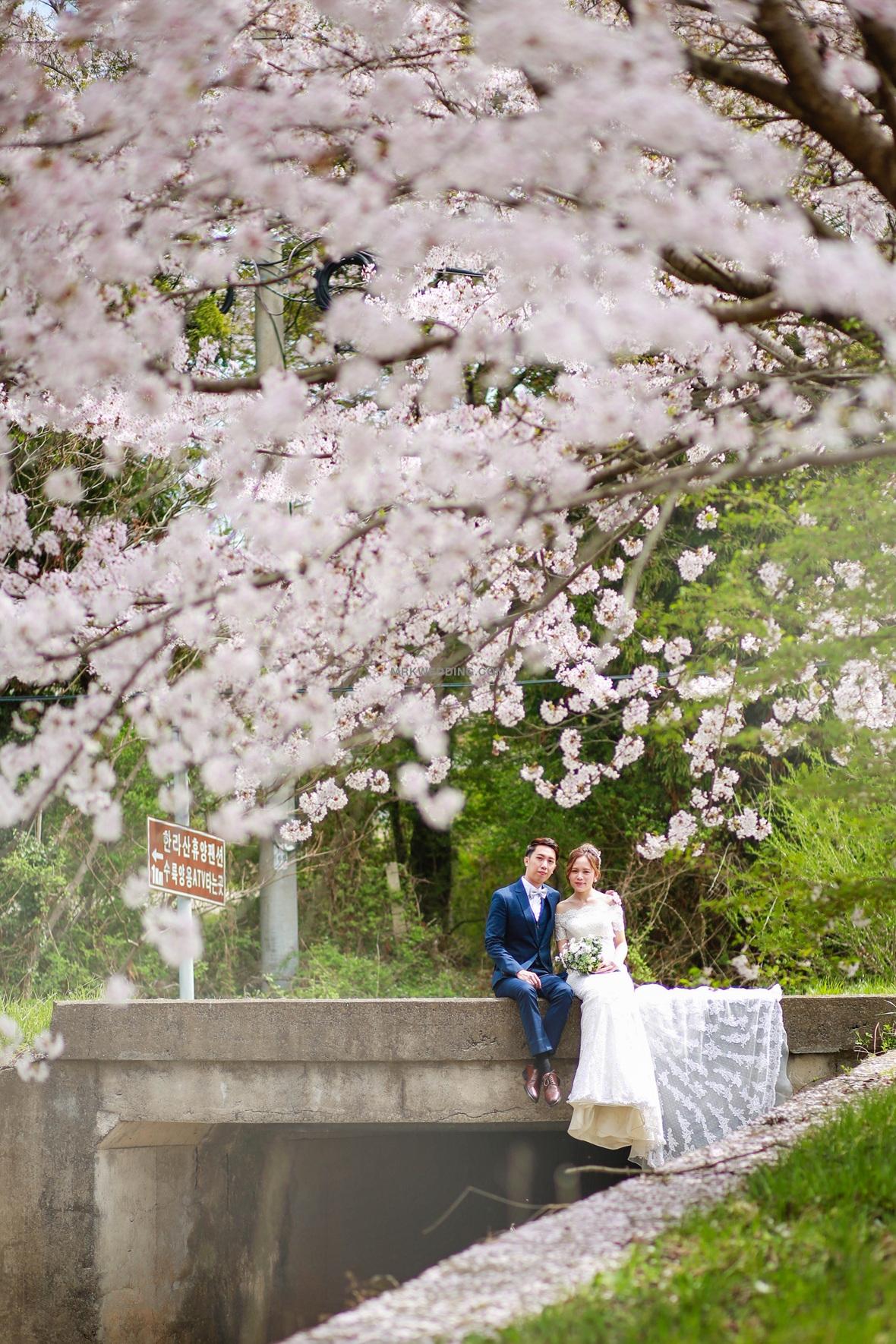 MrK Korea Wedding (4).jpg